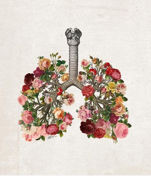 ilustracion-bonita-pulmones-flores